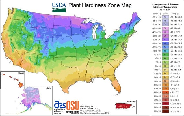 USDA hardiness zones for planting trees