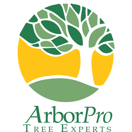 ArborPro Tree Experts Icon